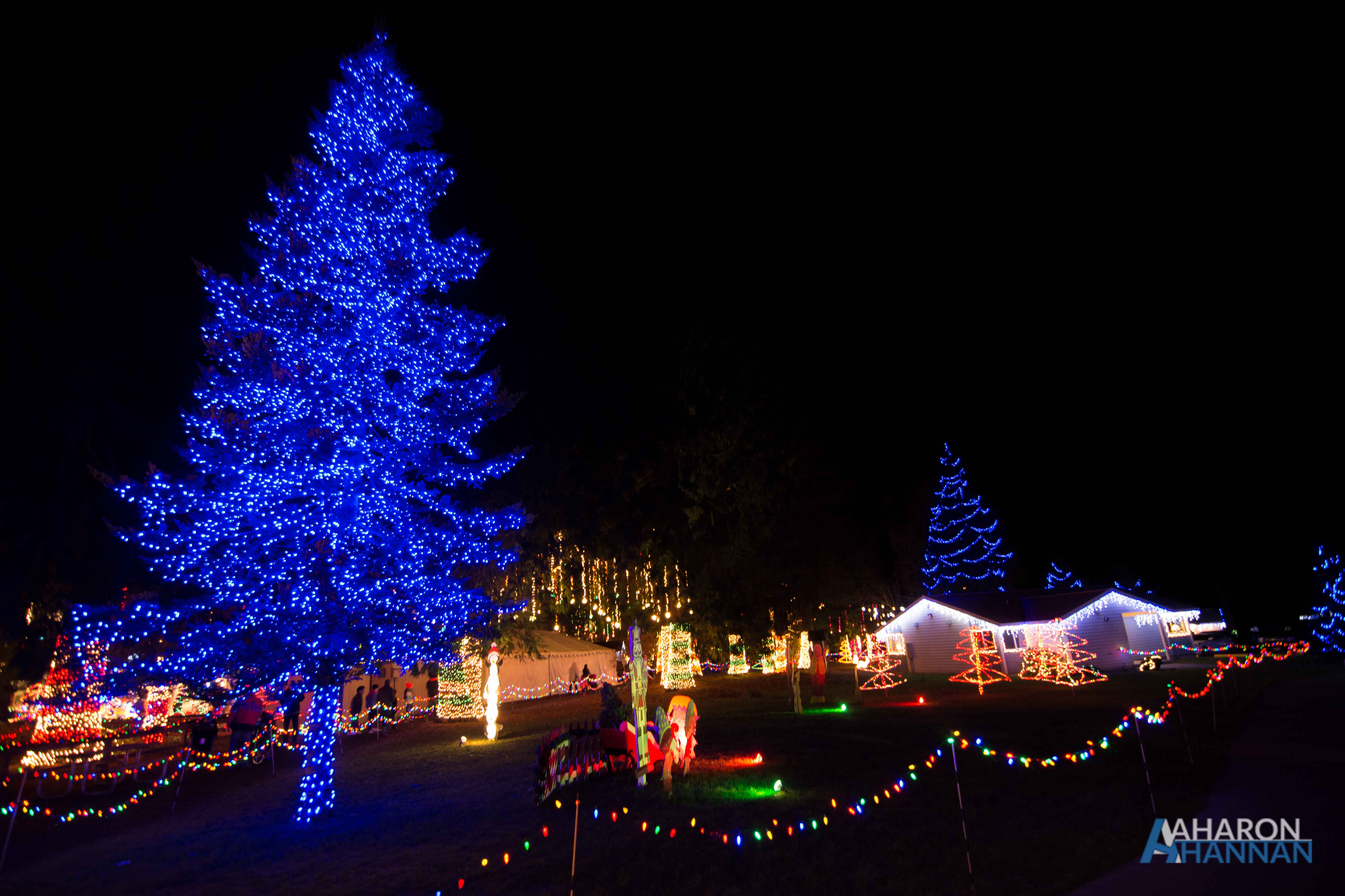 AHM-Lights-Of-Christmas-Festival-25.jpg