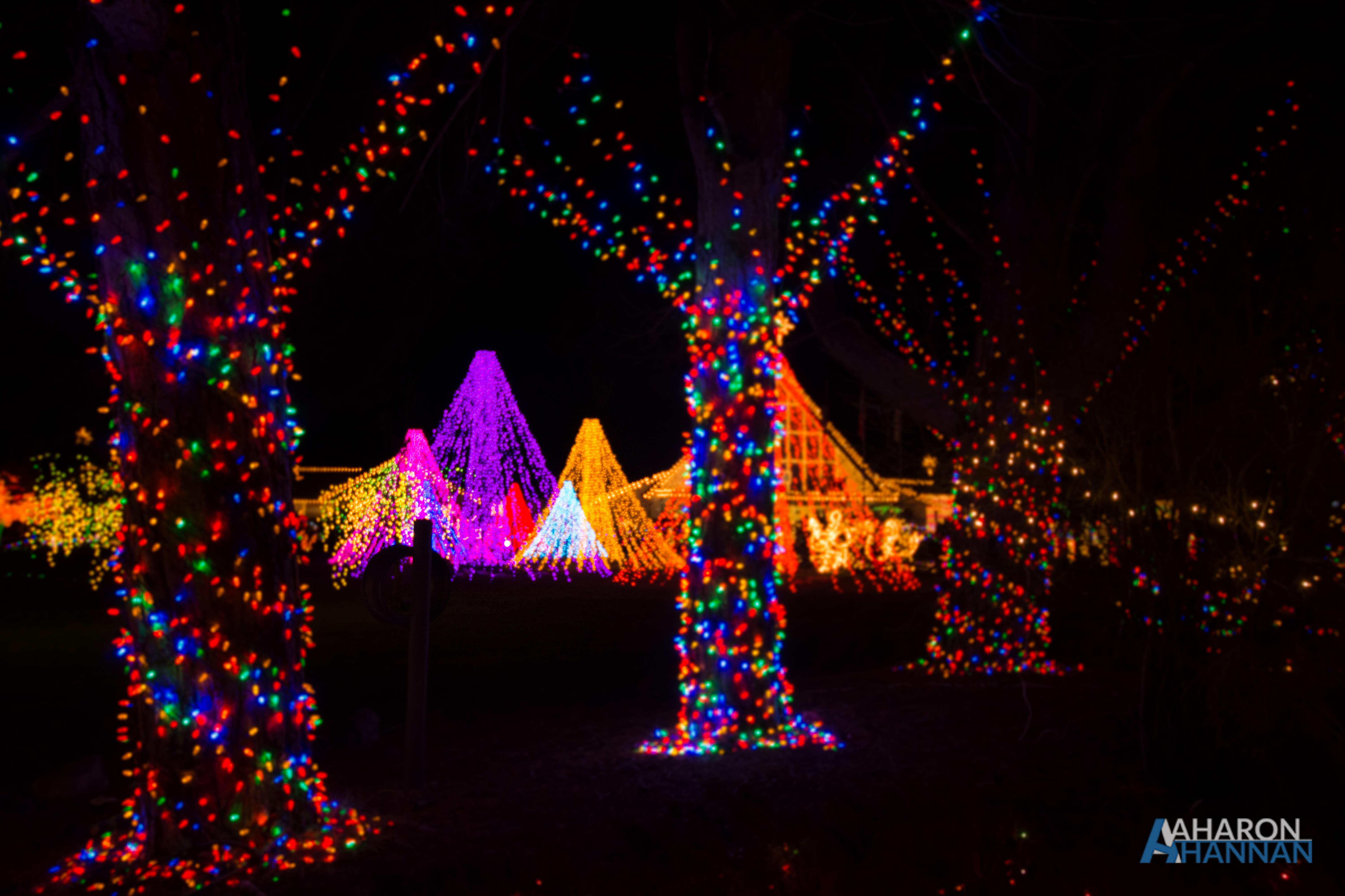 AHM-Lights-Of-Christmas-Festival-54.jpg